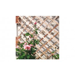 Celosia extensible madera trelliwood 1X2 MT